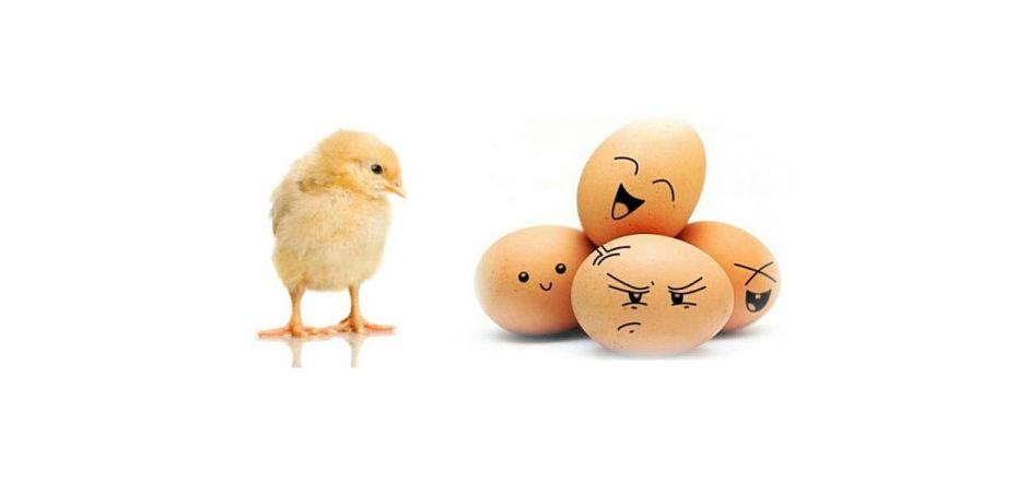 Conversation ou content marketing ? La poule et l'oeuf?