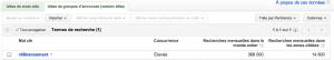Google Adwords en pratique- le terme de recherche: référencement