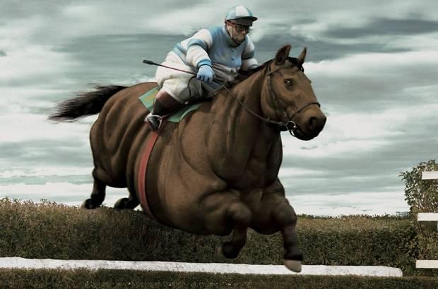 un gros jockey sur un gros cheval