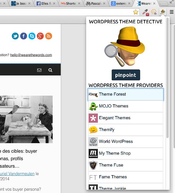 Wordpress theme detective