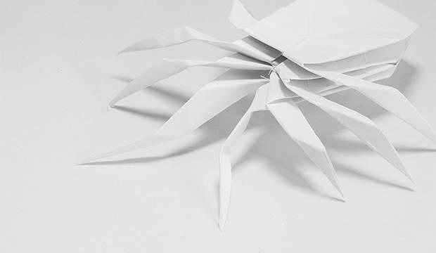 Material design: qu'est-ce que c'est?