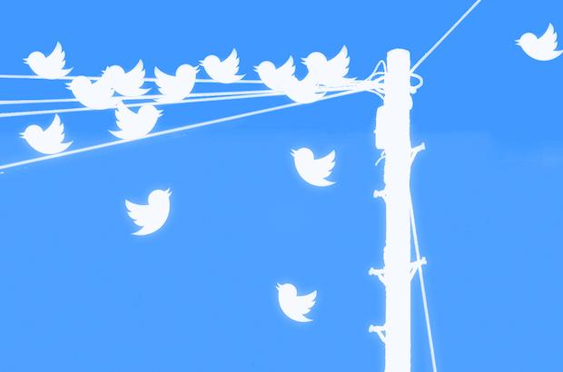 Les premiers pas essentiels pour comprendre et utiliser Twitter