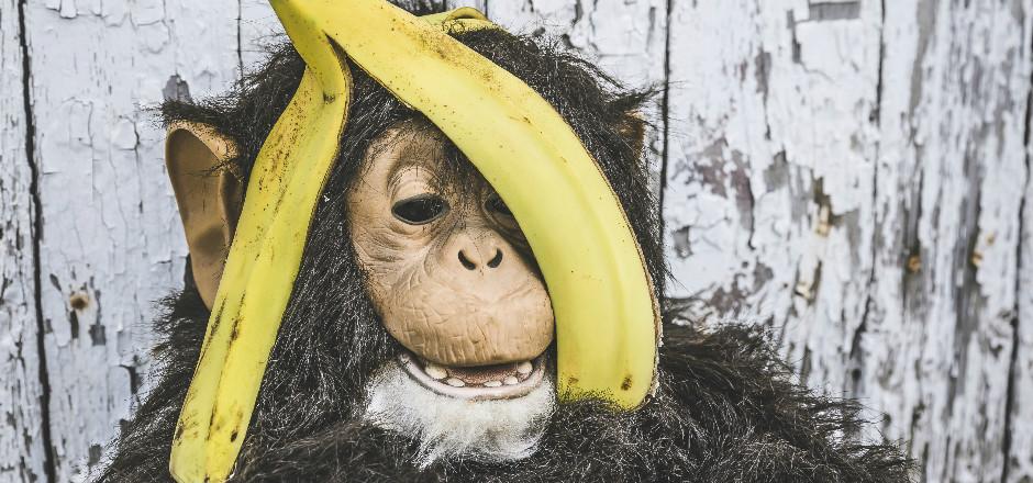 La marque de protections périodiques Nana a fait le buzz avec le lancement de son étrange Shredpad. Un canular déjoué par les internautes! Et vous?