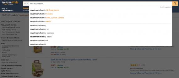 Référencement sur Amazon: Amazon Autosuggest