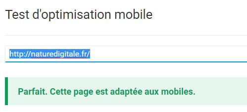 auditer un site : et la compatibilité mobile?